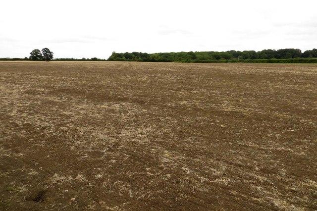 Farmland near Longworth