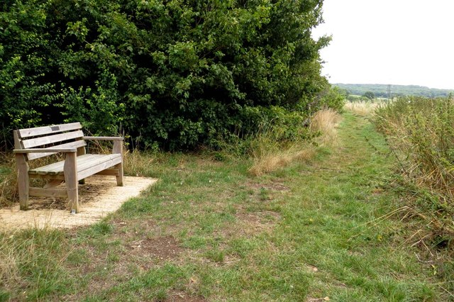 A bench by the footpath