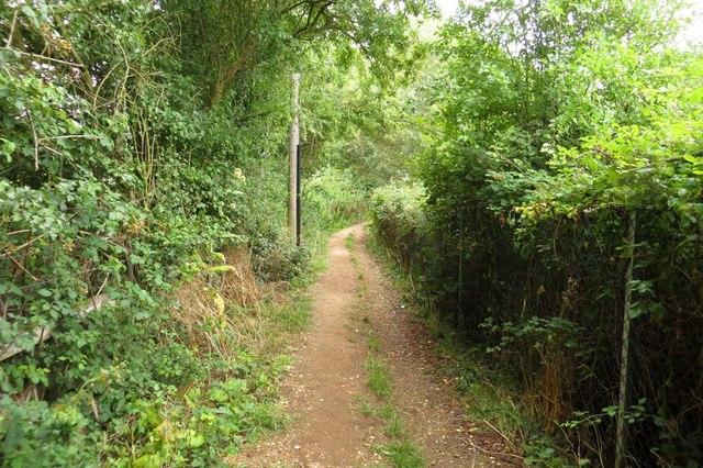 Footpath to Farmoor