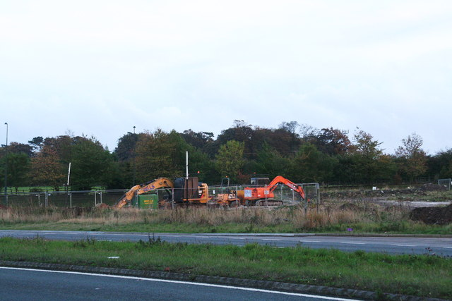 Dinosaurs grazing by Laceby Roundabout