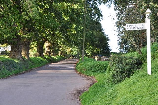Mid Devon : Yew Wood Cross