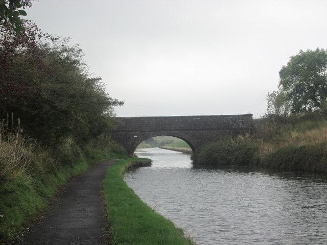 Side Beet Bridge