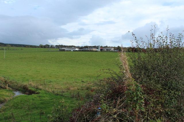 Farmland at Calton