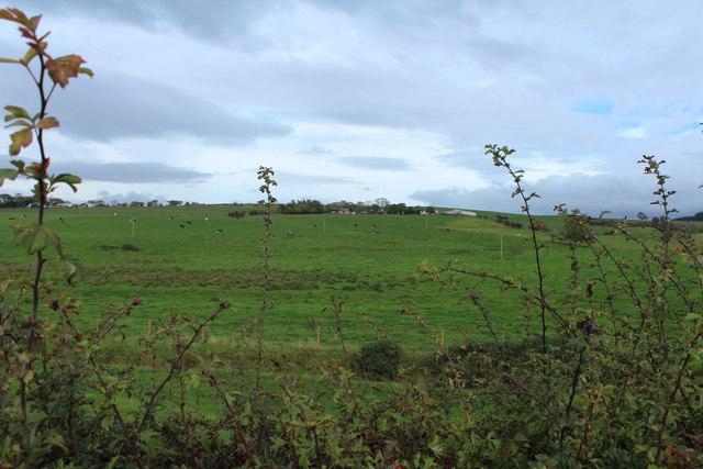 Farmland at Watston