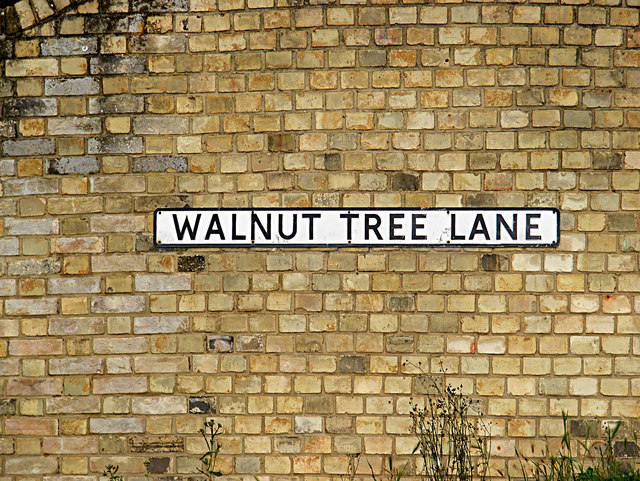 Walnut Tree Lane sign