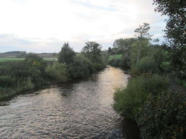 The River Till