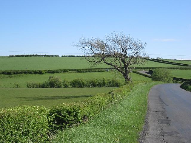 Minor road, Caprington
