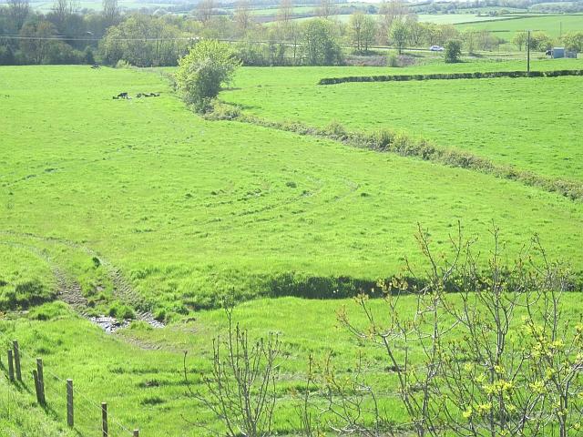 Grassland, Inchgotrick