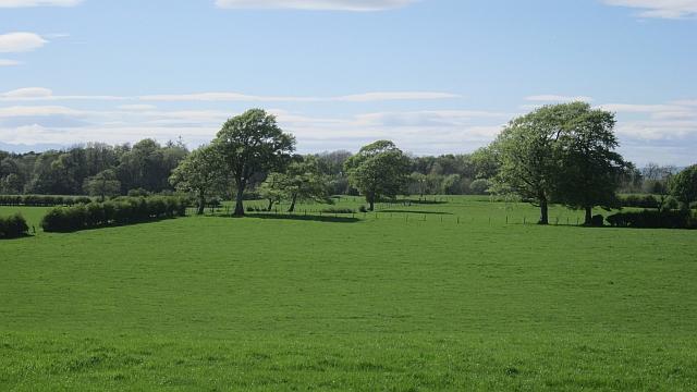 Grassland near Stafflar