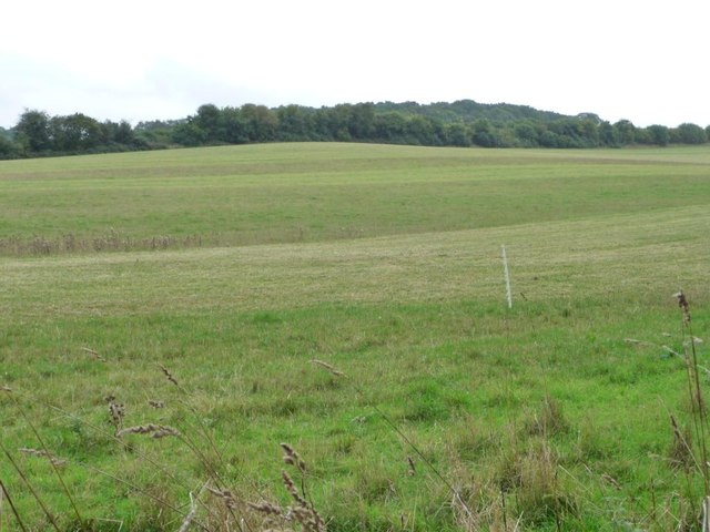 Large field south-west of Parlow Bottom