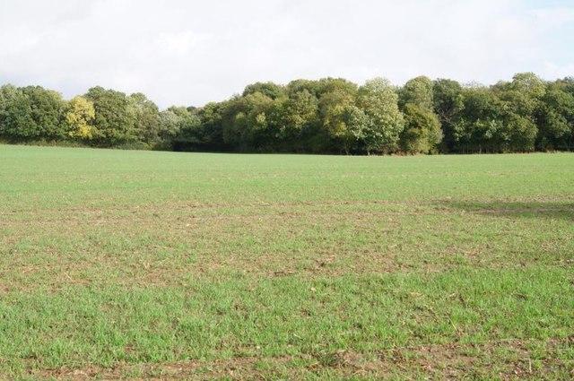 View towards Dean's Plantation