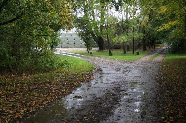 Approach to Scarlett's Farm