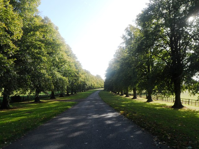 The Driveway to Stoneleigh Abbey