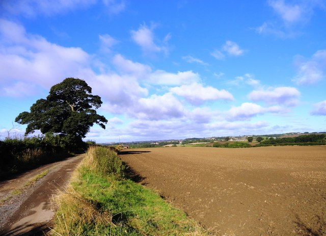 The track to Sprucely Farm