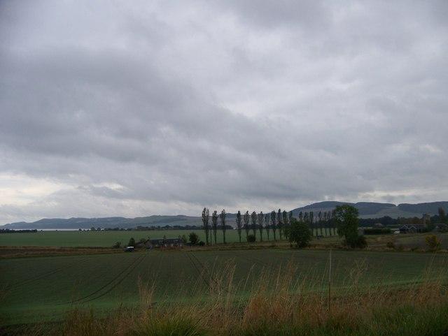Looking downhill towards New Farm east of Errol