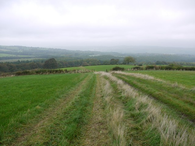 Footpath north-west of Pontop Hall