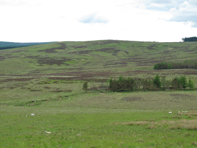 The valley of Bellshiel Burn around Ralph's Cleugh