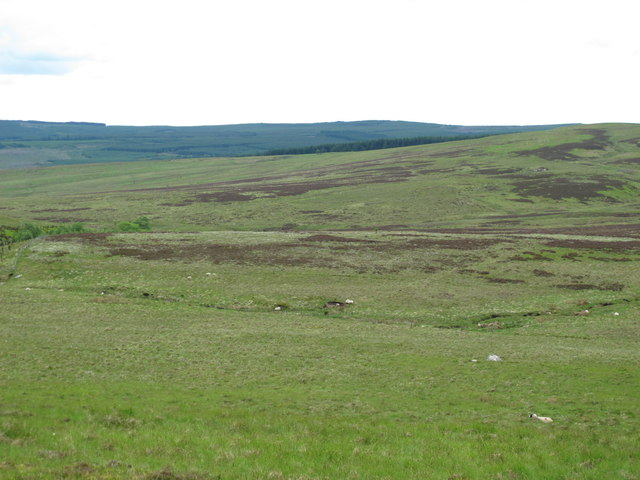 The valley of Bellshiel Burn around Ralph's Cleugh (2)