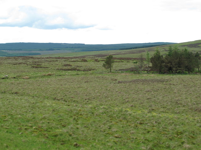 The valley of Bellshiel Burn north of Ralph's Cleugh