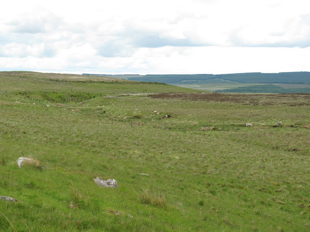 The valley of Bellshiel Burn north of Ralph's Cleugh (2)