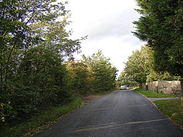 Joes Road, Cornard Tye