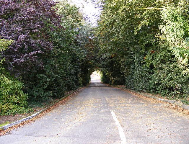 Entrance to Sudbury Garden Centre