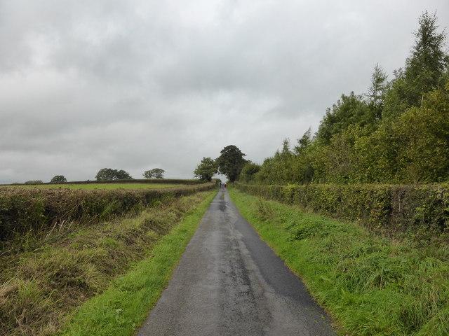 Rural lane above the Golden Valley