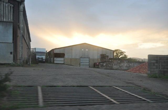 Mid Devon : Bishops Farm