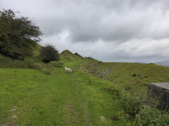 Old track at Darren Cilau quarries above Llangattock