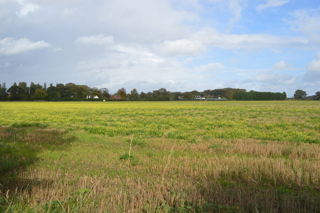 Field by RAF Cosford