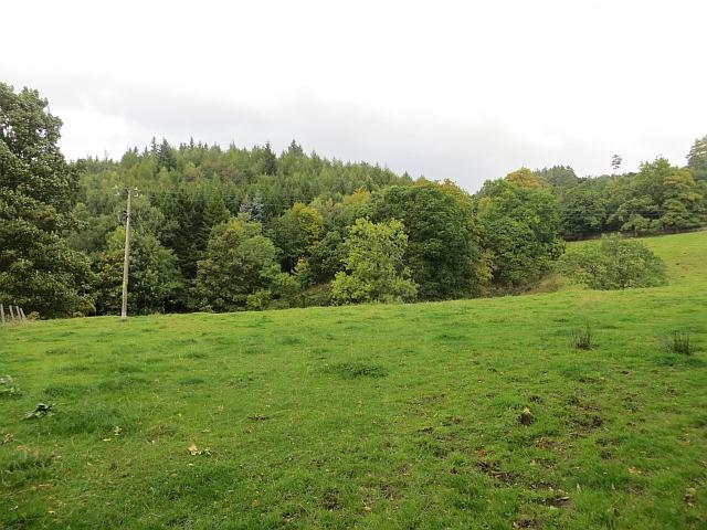 Field, Ardargie