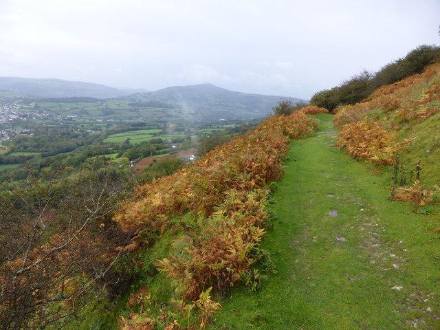 Autumn comes to the Llangattock hillside