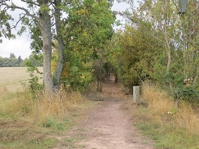 Dunbarney Walk