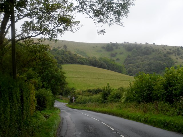 Looking down Beacon Lane towards the Downs