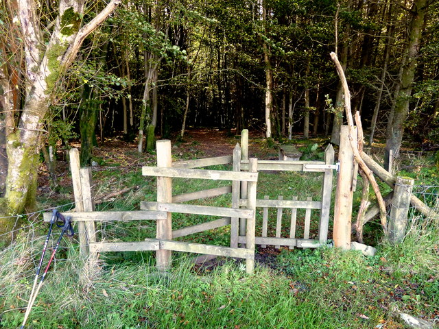 Entrance gate to Balloch Wood