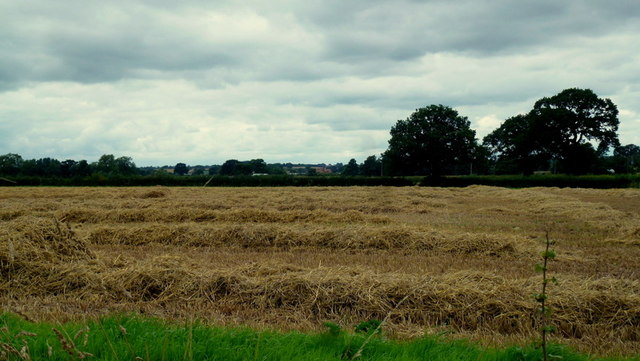 Harvested field at Bartonfields