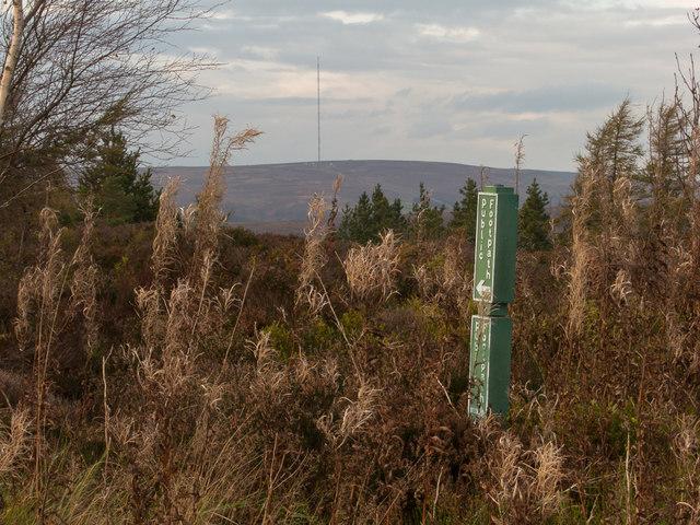 Bilsdale mast from Helmsley Bank