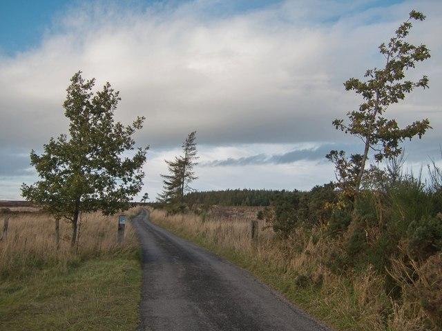 Helmsley Moor