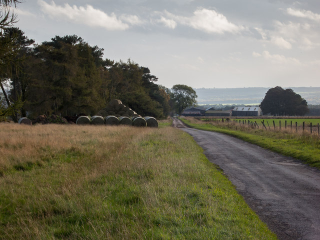 Baxton's Rigg and High Baxton's Farm