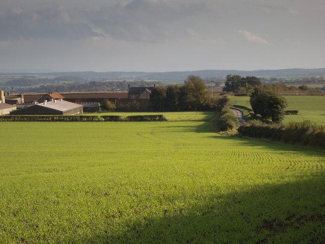 Baxton's Grange Farm
