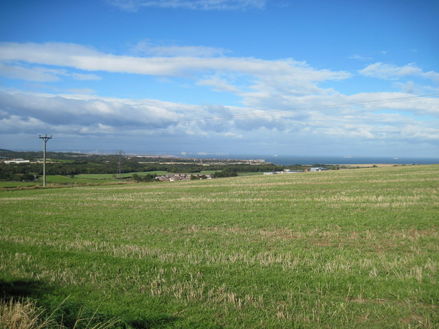 View  over  fields  to  Tees  Bay.
