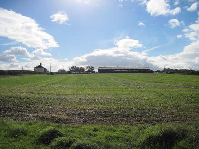 Over  field  to  East  Pastures  Farm