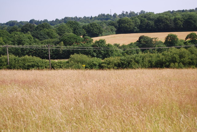 Medway Valley