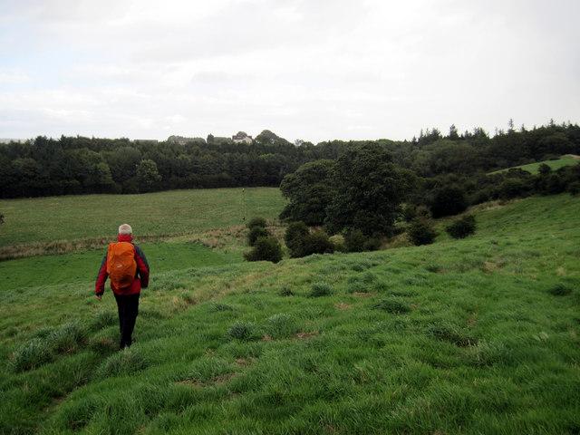 Footpath  to  Merrys  Wood