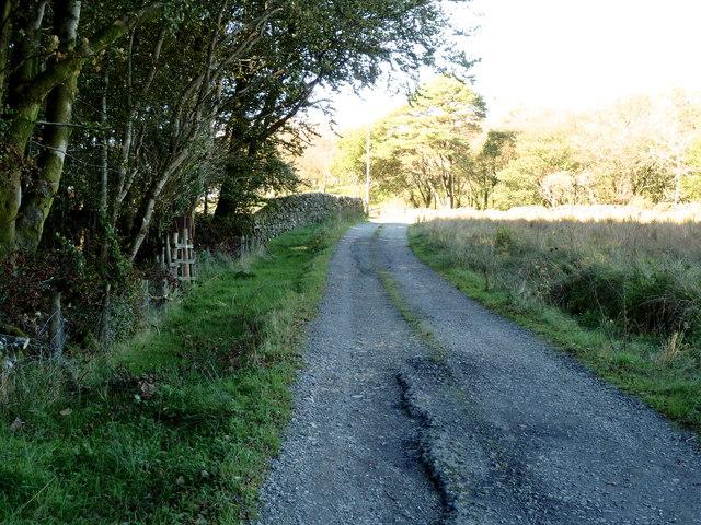 Farm track alongside Balloch Wood