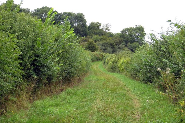 Footpath up Harrowdown Hill