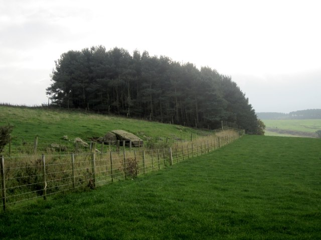 Crag Plantation, South Lyham
