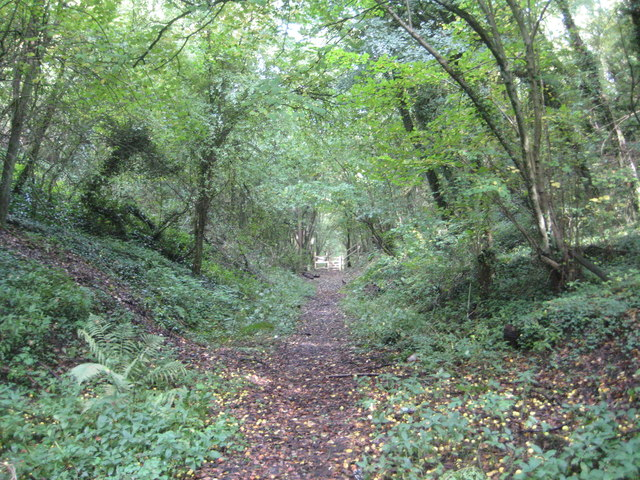Gayton: Former Northampton & Banbury Junction Railway trackbed