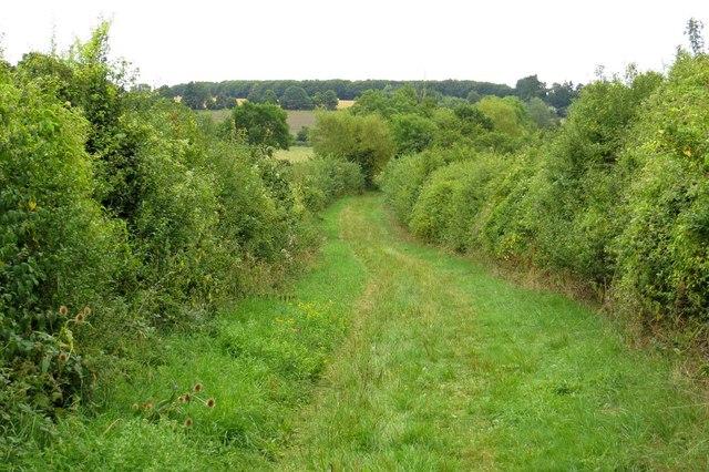 Footpath down Harrowdown Hill to Longworth