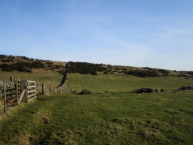 Permissive footpath towards Lyham Hill